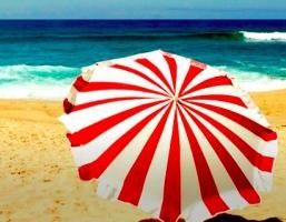 Buone vacanze! La segreteria del CDM riaprirà il 6 settembre
