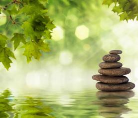 Mindfulness & Musica